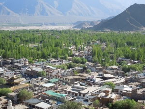 Leh: in the shadow of the Zanskar range